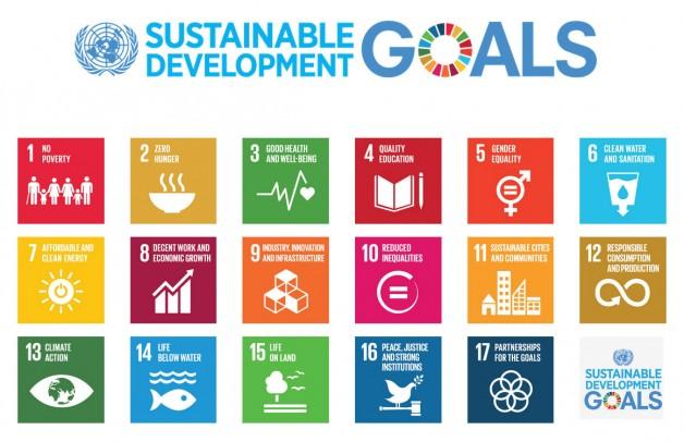 2015 Sustainable development Goals